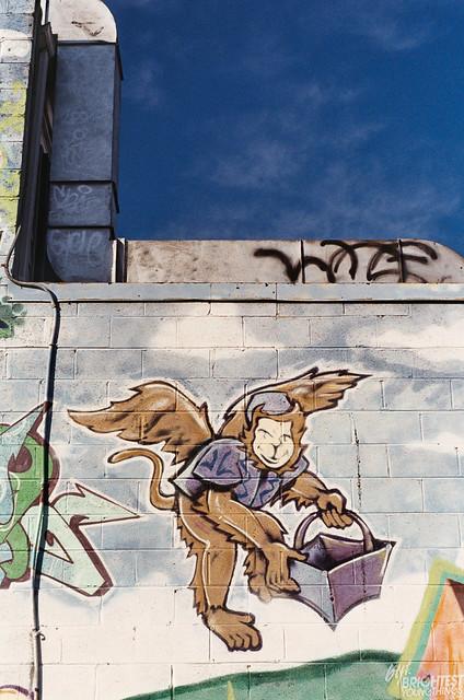 DGDC Murals-1