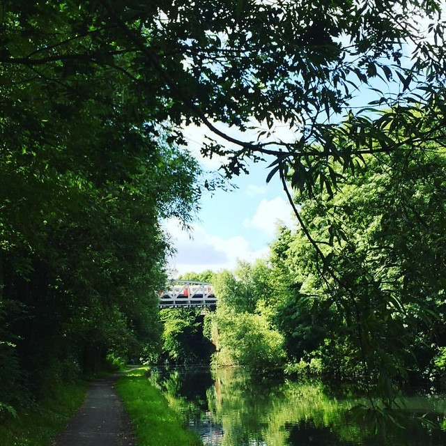 Tube over the canal #morningrun