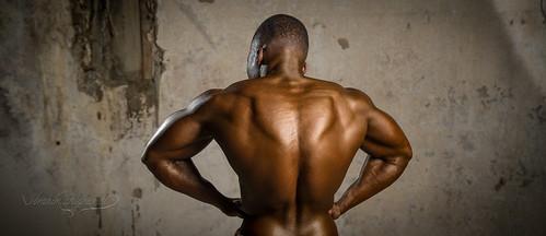 bodybuilding championship 2015  bodybuilding championship 2015 16724971986 7411670d32
