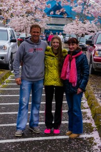 flowering cherry season
