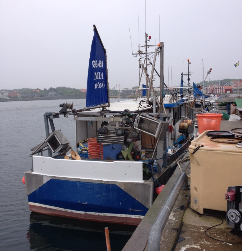 Hönö-Röd_maj2016 - 14