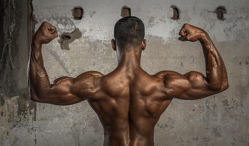 bodybuilding championship 2015  bodybuilding championship 2015 16131530103 3449dc11f6