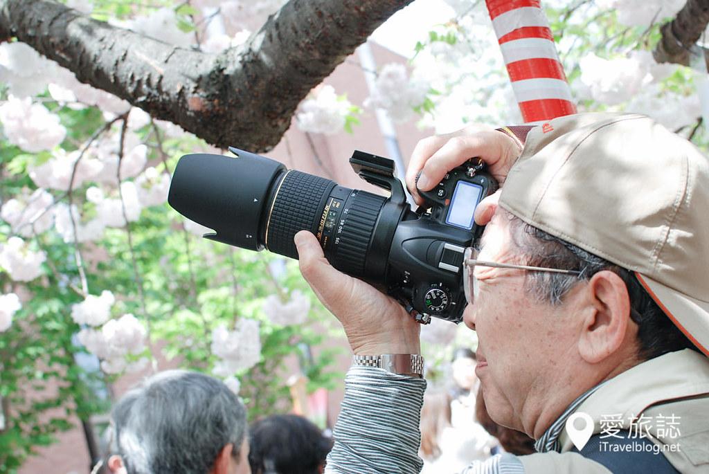 大阪造币局 樱花 50