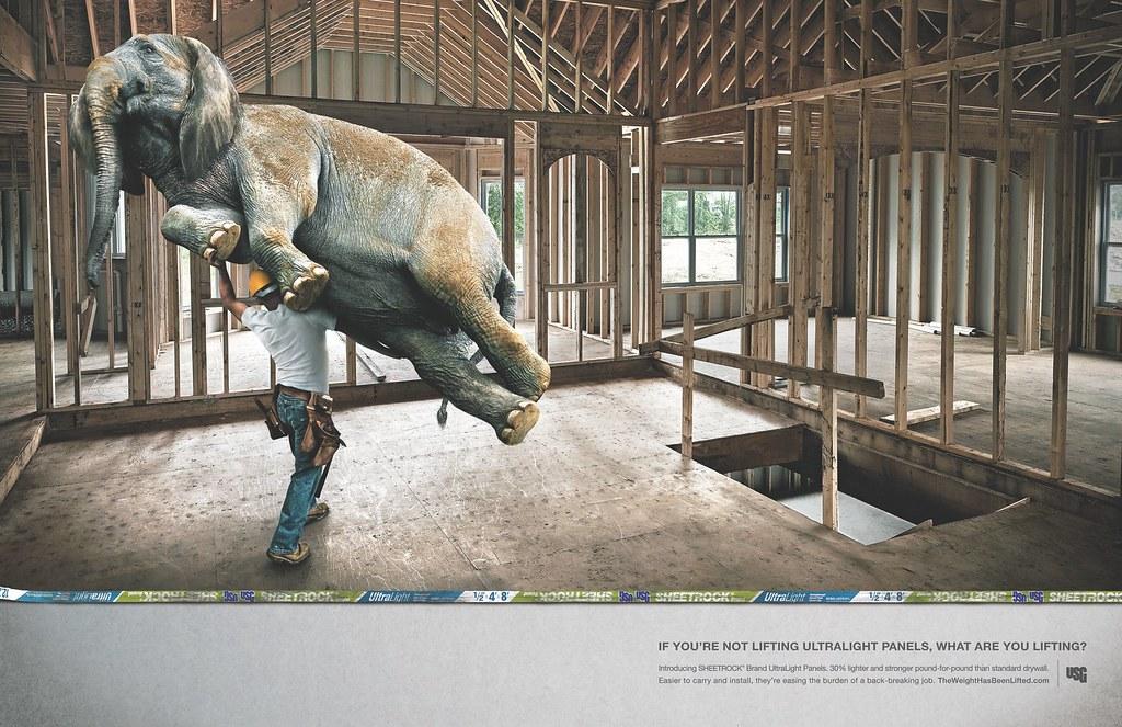 USG Corporation - Elephant