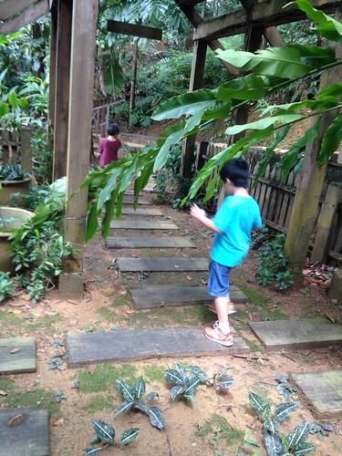 Bukit Nanas... City boys in an urban jungle trek...