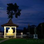 14 Viajefilos en Sri Lanka. Yala 59