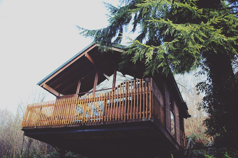 Forest Holidays treehouse
