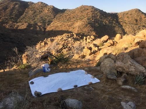 Evening campsite