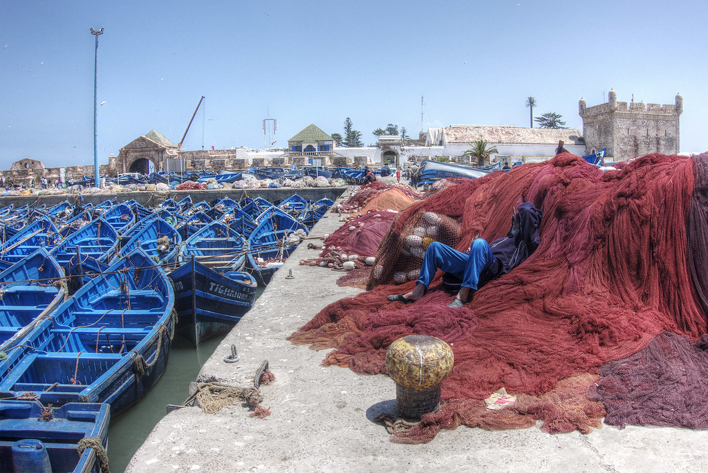 The harbor in Essaouira.
