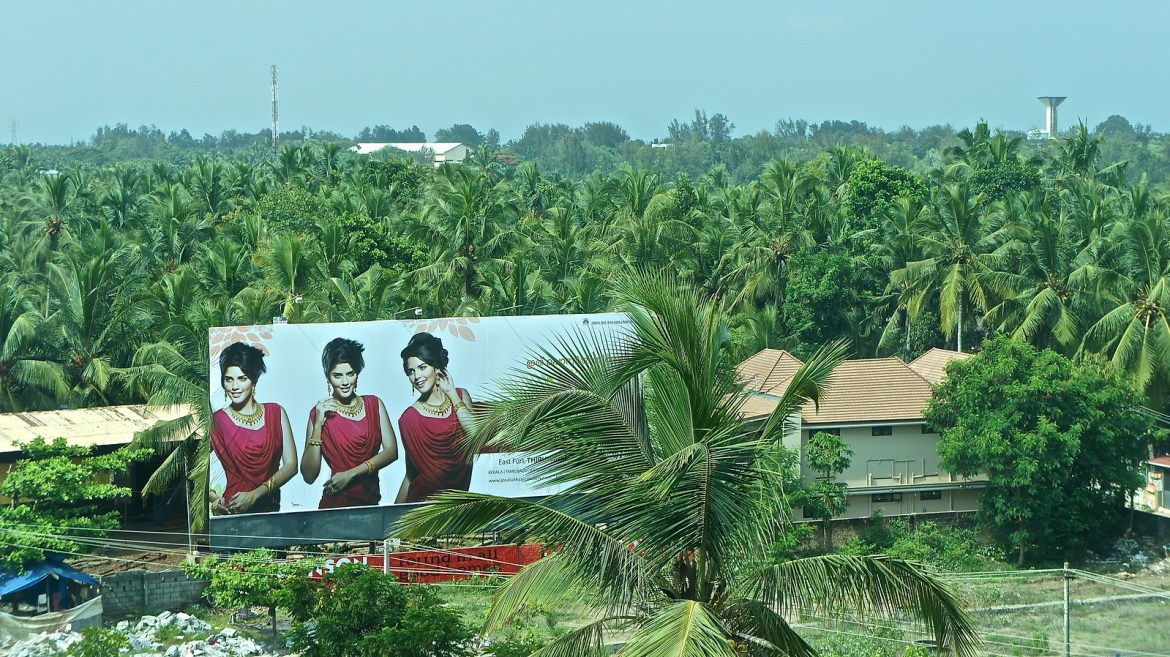 Kerala - Coconut country