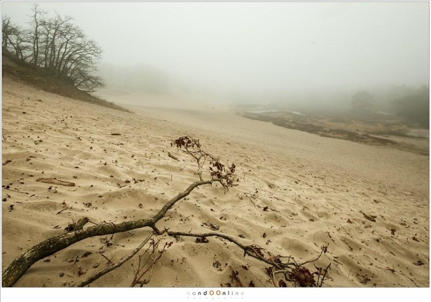 Zonsverduistering en mist. De Bedafse Bergen in de mist