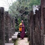 04 Viajefilos en Sri Lanka. Polonnaruwa 12