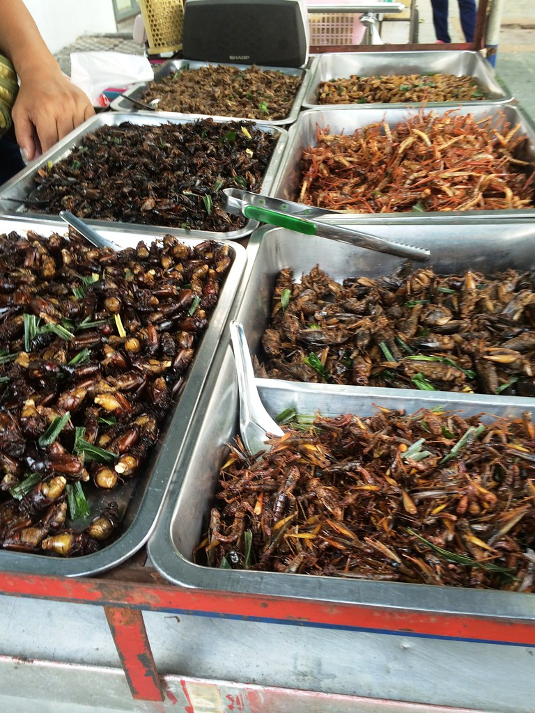Grasshoppers, Crickets, Beetles and More in Bangkok, Thailand, March 2015