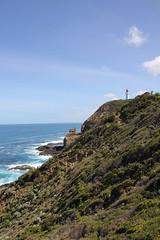 Cape Schanck (3)