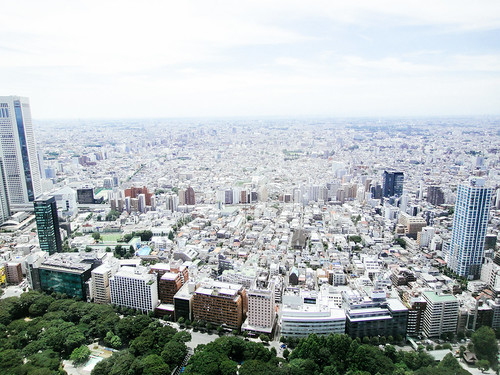 The View from The North Observatory, Tokyo Metropolitan Government Building No.1