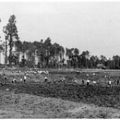 Terraplanagens para construção do aeródromo do Porto, em Pedras Rubras, em 1942