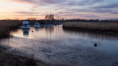 Frome Estuary