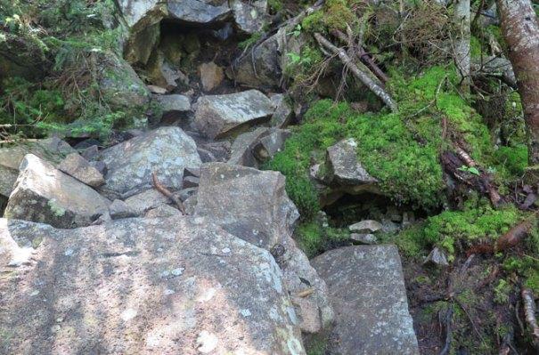 Desolation Trail Tricky Rocks