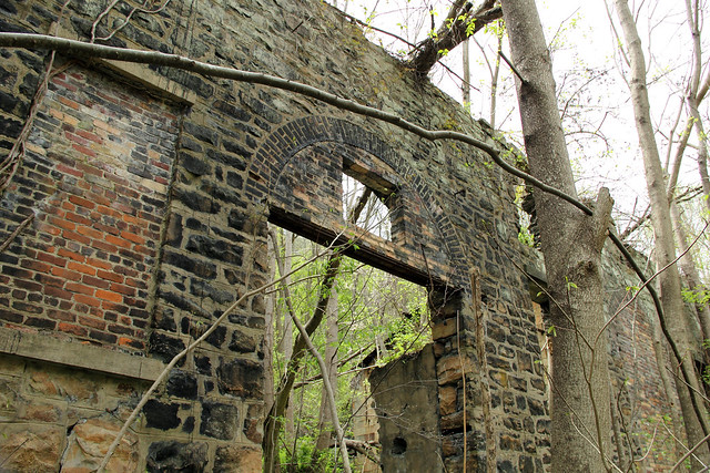 20150418_New_River_Gorge_012