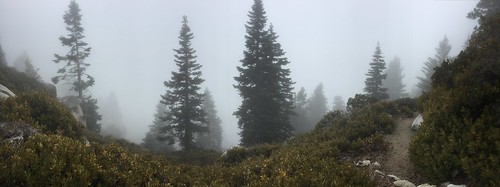 PCT Day 16