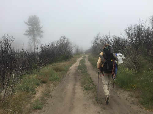 PCT Day 14