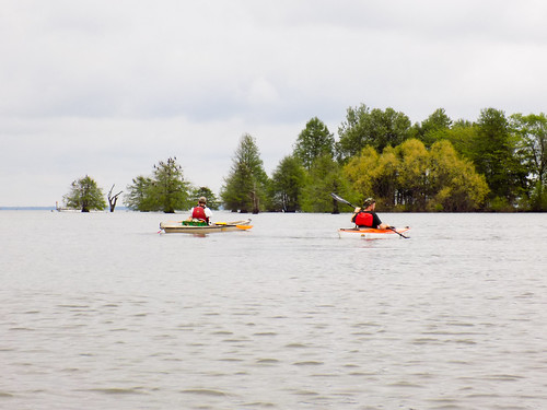 Lake Marion Plantation Islands-18