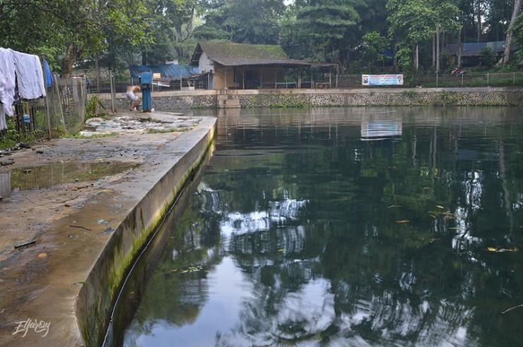 sumbertaman-gondanglegi-pemandangan-kolam