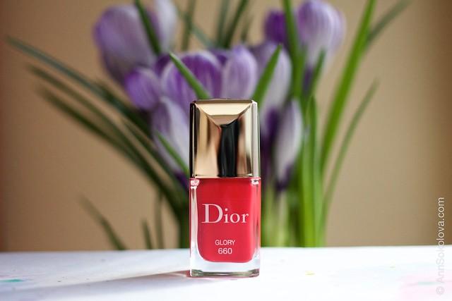 01 Dior #660 Glory