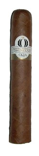Oliva_Orchant Seleccion_Shorty