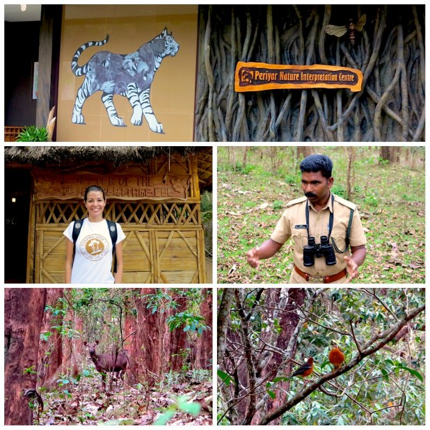 Periyar Nature Interpretation Centre