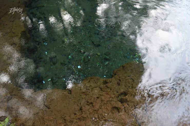 sumbertaman-gondanglegi-jernih-air