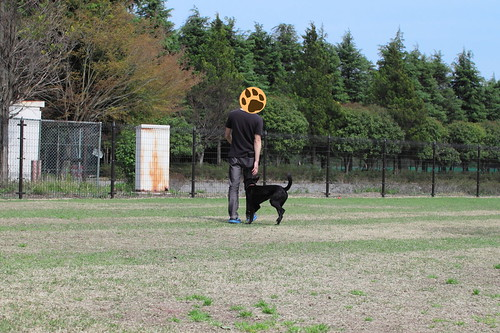 Pepper_2015_04_16_0681