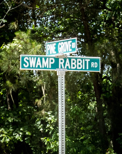 Swamp Rabbit Road