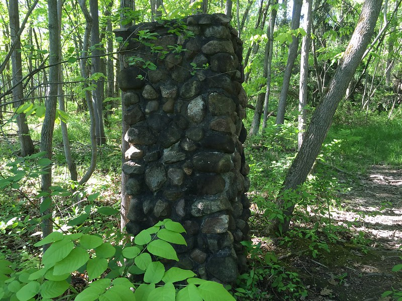 Gatepost in the woods — a wee bit creepy
