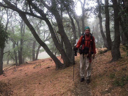 PCT Day 37