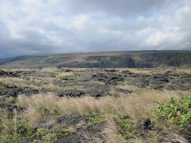 Picture from the Chain of Craters Road