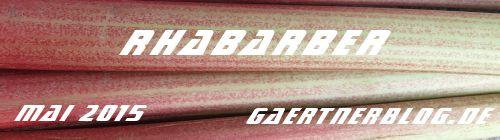 Garten-Koch-Event Mai: Rhabarber [31.05.2015]
