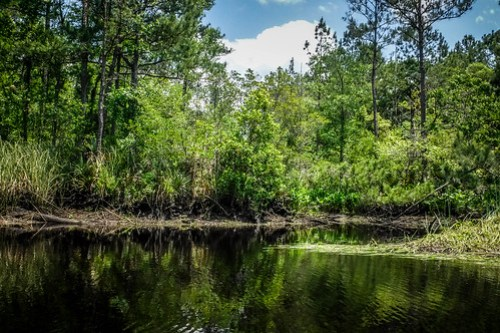 New River Paddling-19