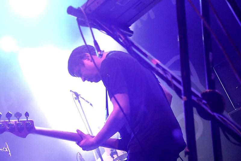 wombats4