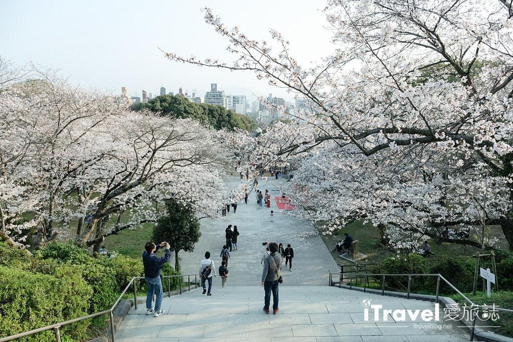 福岡賞櫻景點 西公園Nishi Park (36)