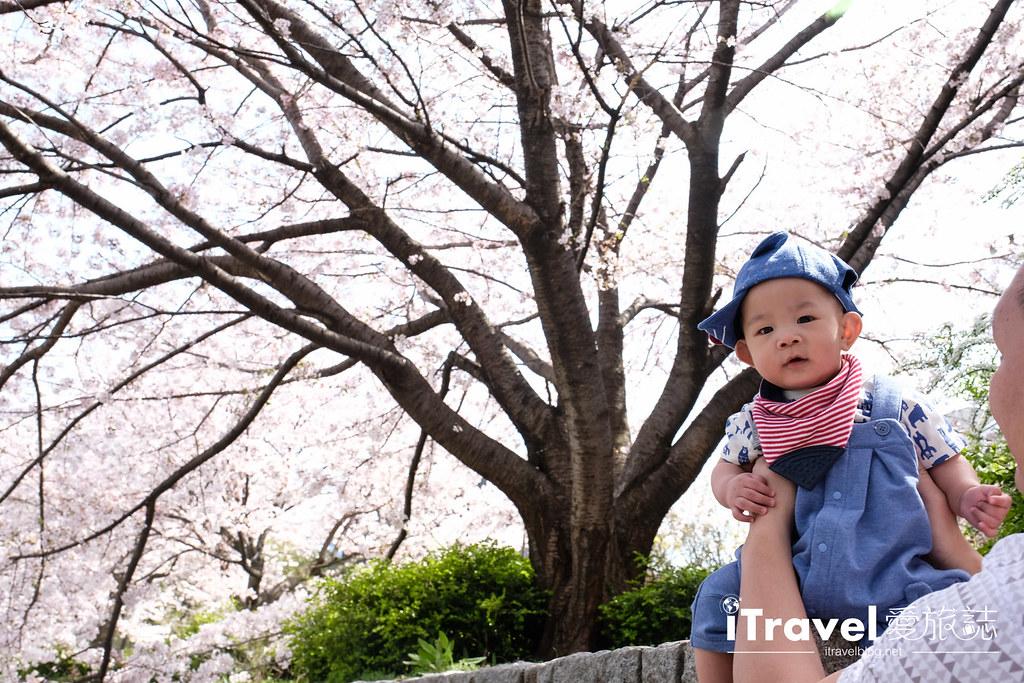 福岡賞櫻景點 美野島南公園 (42)