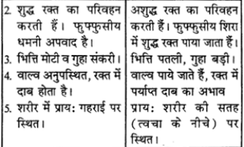RBSE Solutions for Class 9 Science Chapter 8 Vital activities of living 43