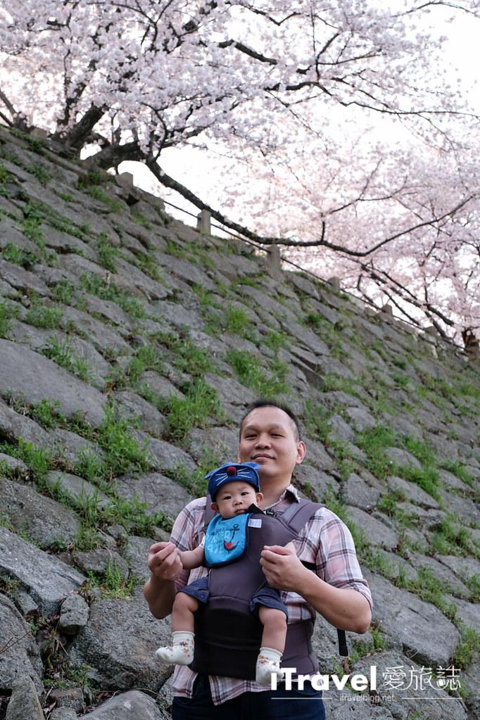 福岡賞櫻景點 福岡城 (43)