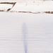 paysage d'hiver dans le Pas-de-Calais