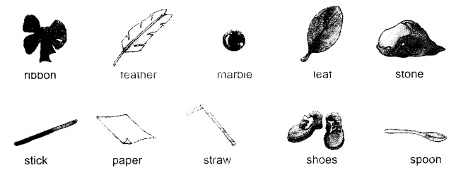 NCERT Solutions for Class 1 English Chapter 4 The Bubble, the Straw, and the Shoe 5