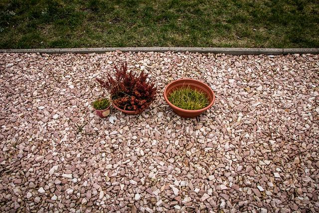 Horro-Gärten: Totes Gelände für alles, was kreucht und fleucht