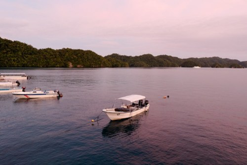 View from Kramer's cafe, Palau