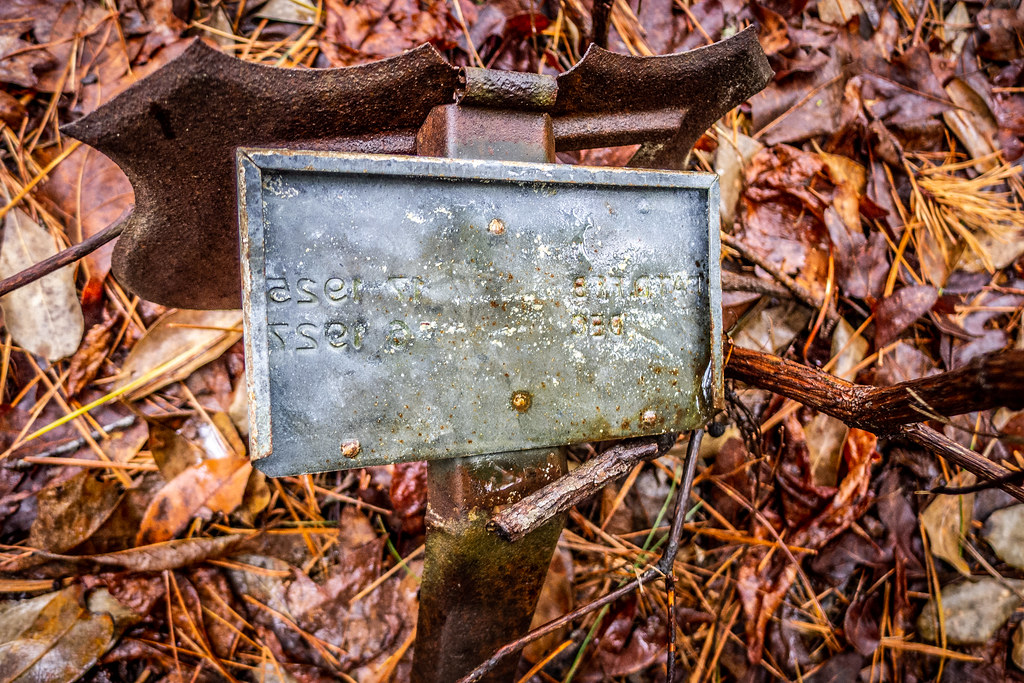 Tall Pines Preserve and South Saluda Church Cemetery-72
