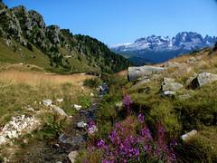 Brenta Dolomites view II