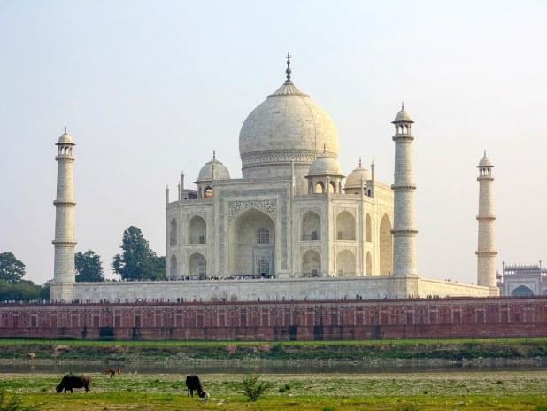 Taj Mahal al atardecer